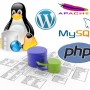 CMS WordPress 4   LAMP (Linux+Apache+MySQL+PHP)