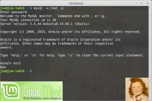 Serveur MySQL 5.5 | Linux Mint 17.2 LTS