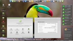Linux MINT 17.3 LTS 64-b   Cinnamon 2.8.6   Kernel 3.19