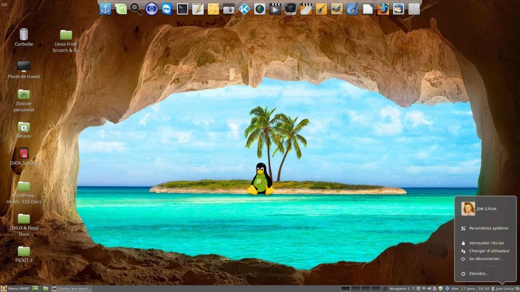 Linux MINT 17.3 LTS 64-b | Tux prend des vacances les pieds dans l'eau