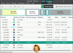 Manjaro 16.10 : État de mon 2ème disque dur après l'installation de la distribution. L'installeur Calamares a merdé grave !