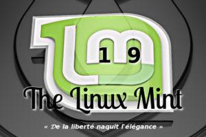Linux mint 19 « tara » Édition mate u2013 installation et premières
